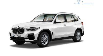 BMWserija X5:xDrive25d Avt. AKCIJA